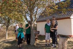 IMG_7829_Mittelstrimmig-Geierlay_20180916